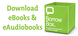 Borrowbox_Cork_Logo